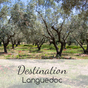 Languedoc-3