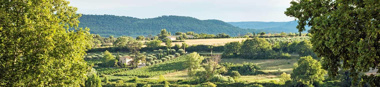 destination-vaucluse