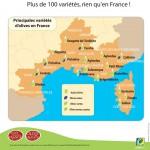Carte-variétés-françaises