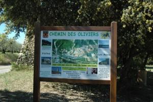 Chemin-des-Oliviers---Les-Mées