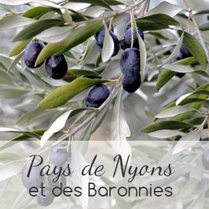 nyons-1