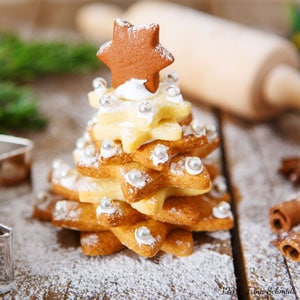 etoiles-cannelle-noel-huile-olive-recette