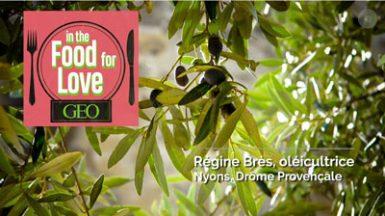 Podcast GEO sur les olives de Nyons