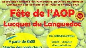 Fête de l'aop Lucques du Languedoc 2019