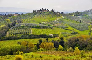 9948190_xl---Toscane---dutourmonde---123rf