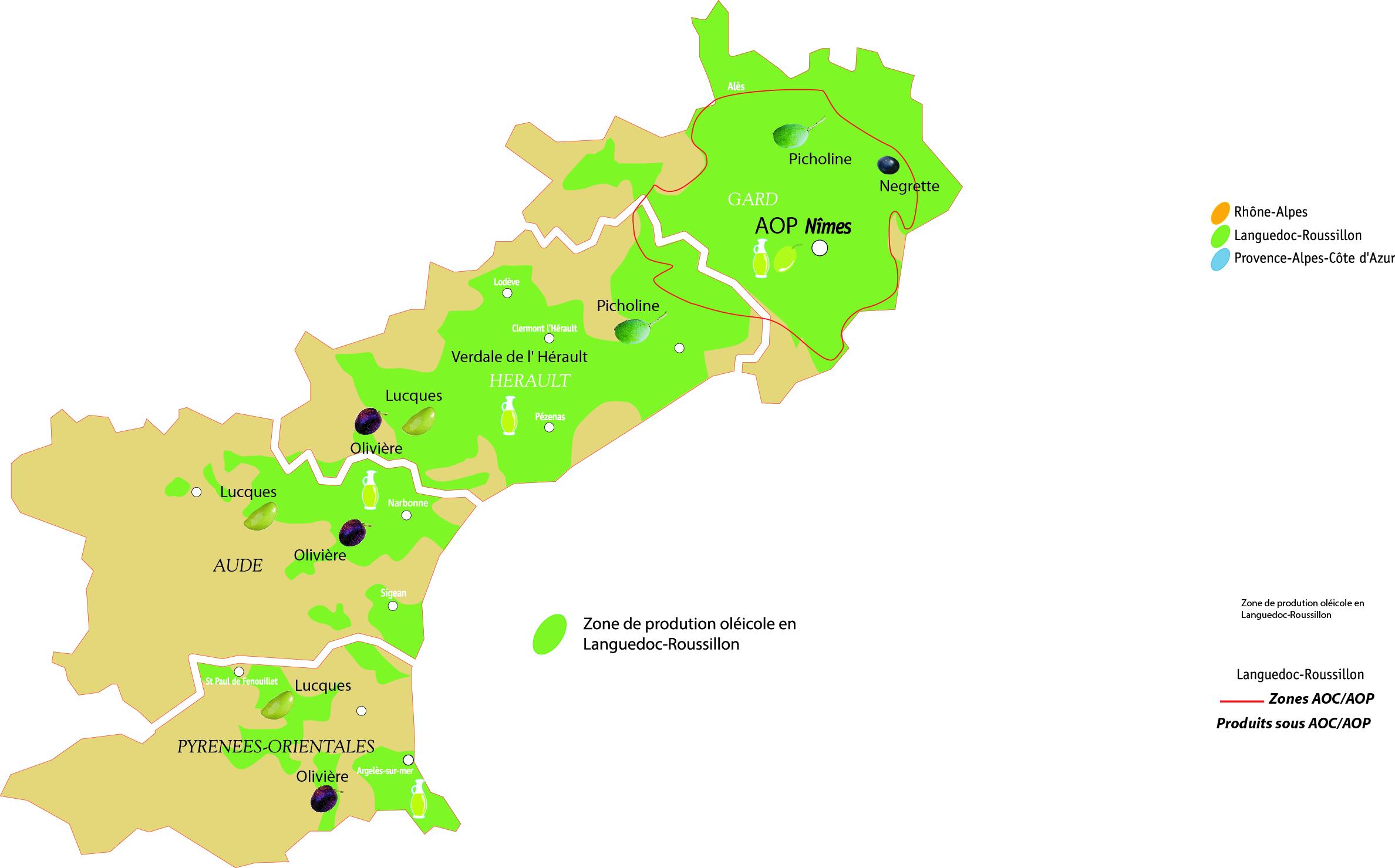 Huiles Et Olives Les Huiles D Olive De Nos Moulins En Languedoc Huiles Et Olives Fr