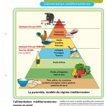 Sciences_alimentation